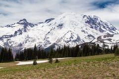 Norr framsida av Mt rainier Arkivfoto