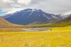 Norr Island panorama Royaltyfri Fotografi