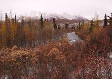 Norr Klondike flod Royaltyfria Bilder