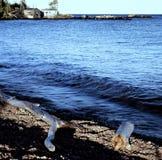 Norr kust av Lake Superior - Minnesota Royaltyfria Bilder