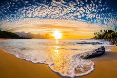 Norr kustHawaii solnedgång royaltyfri fotografi