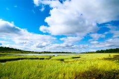 norr lake Arkivbilder