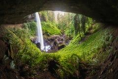 Norr nedgångar på försilvrar nedgångdelstatsparken nära Silverton, Oregon i sommartid Mest populära vattenfall i USA royaltyfri bild