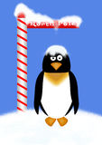 norr pingvinpol Arkivbild