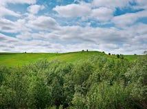 norr ryssby Arkivbilder
