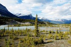 Norr Saskatchewan flod, kanadensiska steniga berg, Kanada Royaltyfri Foto