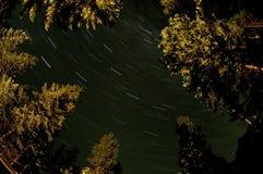 norr stjärnatrail för kaskader Arkivfoto