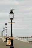 norr stolpar whitby yorkshire för lampa Royaltyfria Bilder