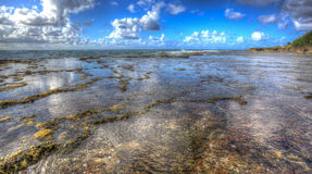 Norr strand Kaneohe Marine Corps Base Hawaii Royaltyfria Bilder