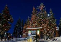 Norr Vancouver Kanada - December 30, 2017: Skridskoåkningisbana, gyckel och underhållning på skogshönsberget Arkivfoton