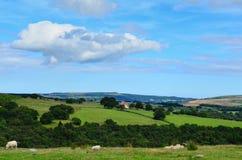 Norr York förtöjer Yorkshire England arkivfoton