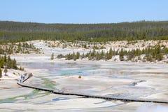 norris гейзера тазика национальные паркуют yellowstone стоковые фото