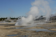 Norris Geyser Basin Royalty Free Stock Images
