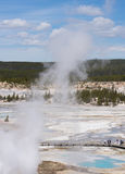 Norris Geyser Basin from Above Stock Photos