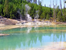 Norris Geyser Basin - bacia da porcelana (lago crackling) imagens de stock royalty free