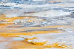 Norris Geyser Basin en el parque nacional de Yellowstone Fotos de archivo libres de regalías