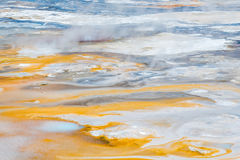 Norris Geyser Basin en parc national de Yellowstone Photos libres de droits