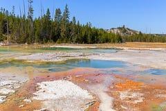 Norris Geyser Basin in het nationale park van Yellowstone Royalty-vrije Stock Foto's