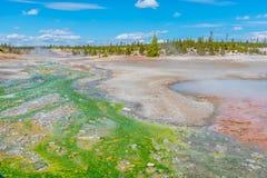Norris Geyser Basin i den Yellowstone nationalparken Royaltyfria Bilder