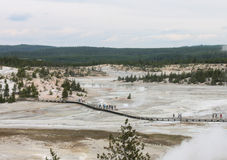 Norris Geyser Basin, parc national de Yellowstone Photographie stock libre de droits