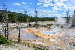 Norris Geyser Basin, parque nacional de Yellowstone, Wyoming, EUA Imagens de Stock