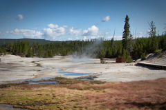 Norris Geyser basin. Part of the Norris Geyser basin, Yellowstone National Park royalty free stock photography