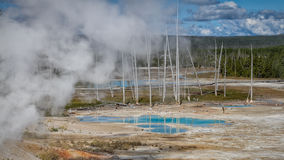 Norris Geyser basin. Part of the Norris Geyser basin, Yellowstone National Park stock images