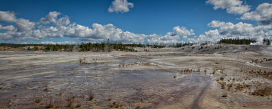 Norris Geyser basin. Part of the Norris Geyser basin, Yellowstone National Park royalty free stock images
