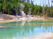 Norris Geyser Basin - Porzellan-Becken (Crackling See) lizenzfreie stockbilder