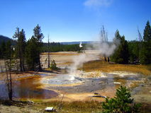 Norris Geyser Basin view - Minute Geyser Stock Photos