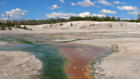 Norris Geyser Basin, Yellowstone Stock Photo