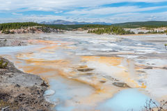 Norris Geyser Basin in Yellowstone National Park. Hot springs, geysers, steam, bacteria in Norris Geyser Basin area in Yellowstone National Park in Wyoming, USA Stock Image