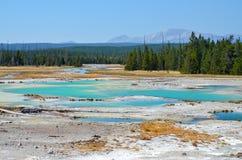 Norris Geyser Basin at Yellowstone National Park Royalty Free Stock Photo