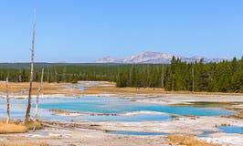 Norris Geyser Basin in Yellowstone Nationalpark Lizenzfreies Stockfoto