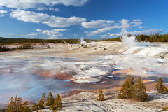 Norris Geyser Basin, Yellowstone Nationalpark Stockfotografie