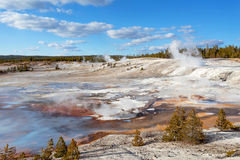 Norris Geyser Basin, Yellowstone Nationalpark Stockfoto
