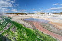 Norris Geyser Basin Yellowstone, Wyoming, USA Stockbilder