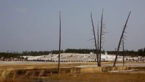 Norris Geyser, parco nazionale di Yellowstone Fotografie Stock