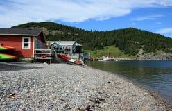norris pekar kusten Fotografering för Bildbyråer