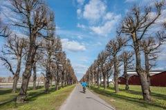 Norrkoping, Швеция Стоковые Фотографии RF