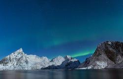 Norrsken över Lofoten snöar dolda berg med stjärnklart Royaltyfri Bild