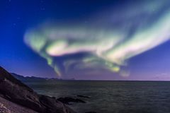Norrsken eller nordliga ljus på Lofoten, Norge Royaltyfri Fotografi