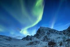 Norrsken på de Lofoten öarna, Norge Gröna nordliga ljus ovanför berg Natthimmel med polara ljus Nattvinter l arkivfoton
