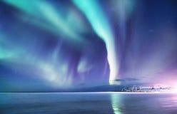 Norrsken på de Lofoten öarna, Norge Gröna nordliga ljus ovanför havkust Natthimmel med polara ljus Det iskalla trädet skiner en s arkivbilder