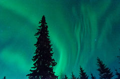 Norrthern Lights Royalty Free Stock Photo