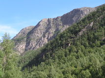 Norsk liggande Arkivbild