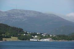 Norsk liggande Arkivbilder