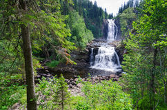 Norsk naturlig vattenfall Arkivfoton
