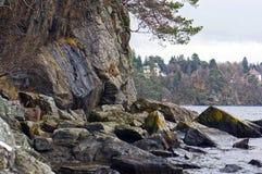 Norska fjords och berg Stenig kust, vågor och träd _ Arkivbild