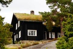 Norska hus, Norge Fotografering för Bildbyråer